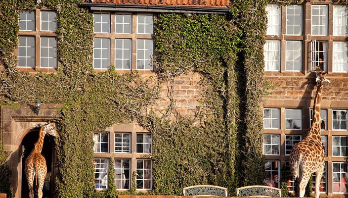 Самые необычные отели мира. Топ-10 | фото, инфо