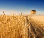 Американцы готовы вложить в украинский агросектор 1 млрд долл.