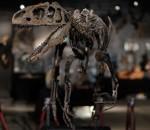 Аллозавр Маленький Ал