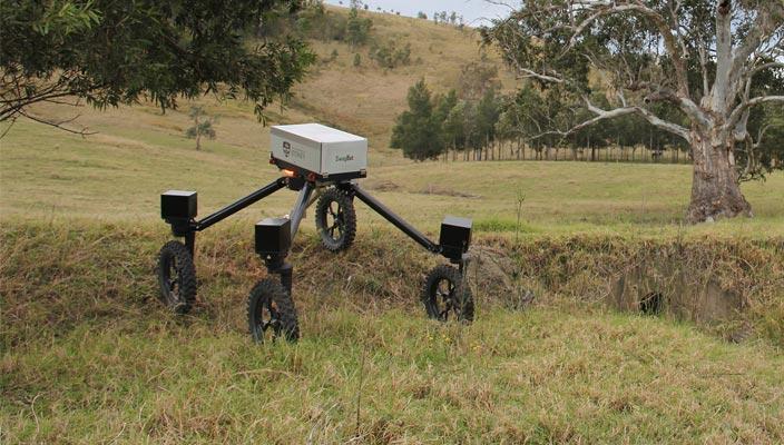 Робот-пастух SwagBot
