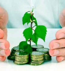 Риски малого бизнеса. Как от них защититься?