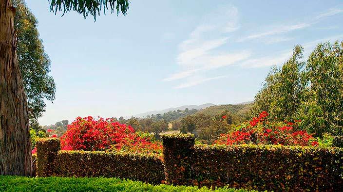 Вид на зеленую долину со двора дома Тома Хэнкса