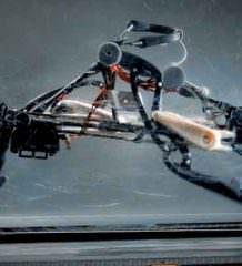 Создан робот бегун, разгоняющийся до 19,31 км/ч | видео