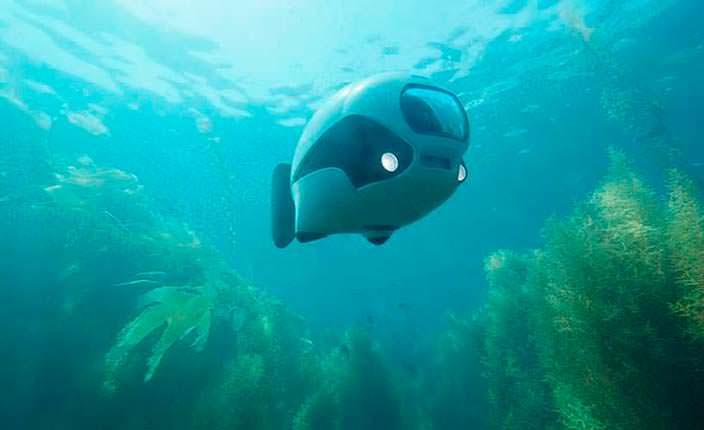 Вышел первый в мире бионический подводный дрон BIKI