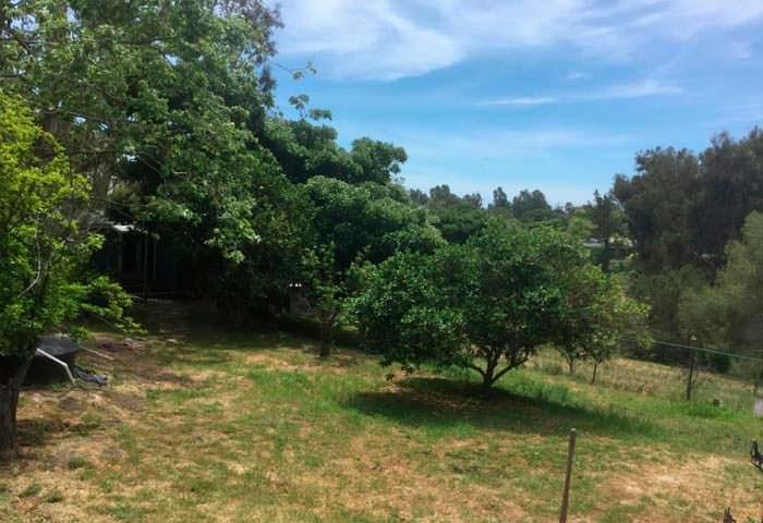 Сад и большой задний двор на ранчо Джулии Робертс в Малибу