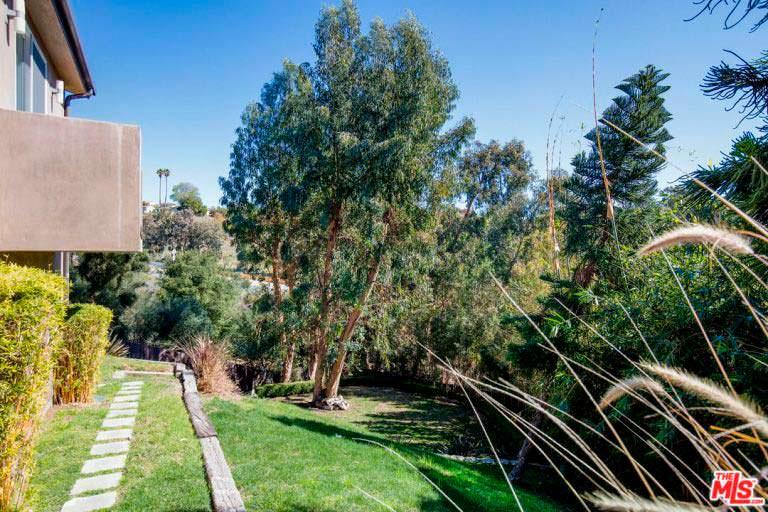 Лужайка у дома с тропинкой и зрелыми деревьями