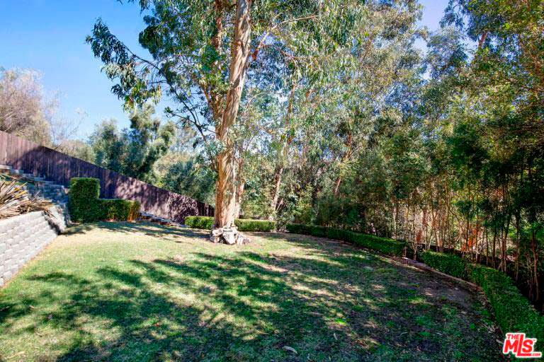 Задний двор дома в тени деревьев
