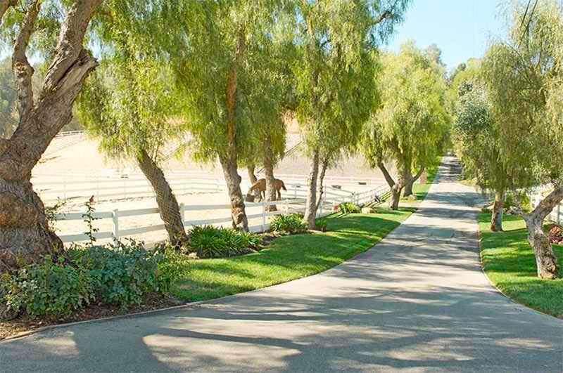 Частная дорога в тени деревьев к конной ферме Майли Сайрус