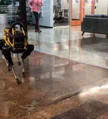 В Boston Dynamics своя атмосфера: теперь роботы танцуют | видео