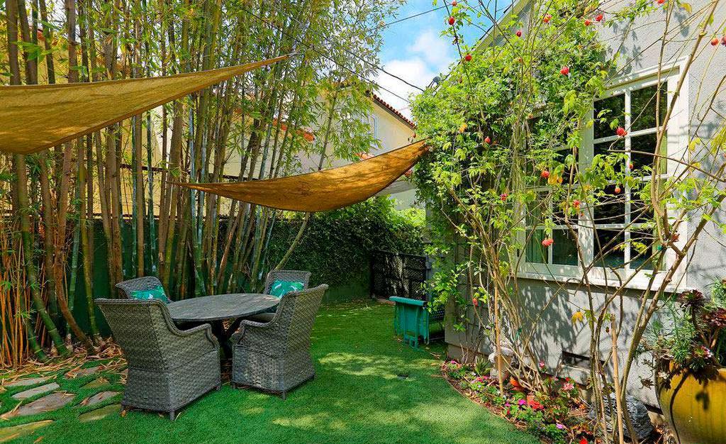 Бамбуковая роща и гамаки на заднем дворе