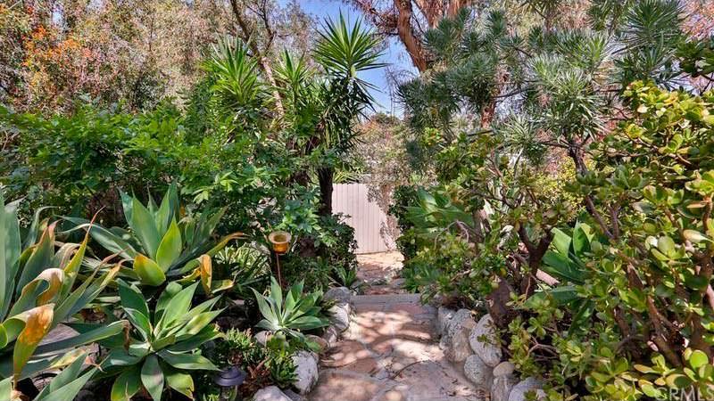 Сад на заднем дворе