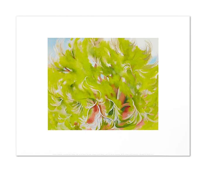 Картина Джорджии О'Кифф Cottonwood Tree in Spring (Хлопковое дерево весной)