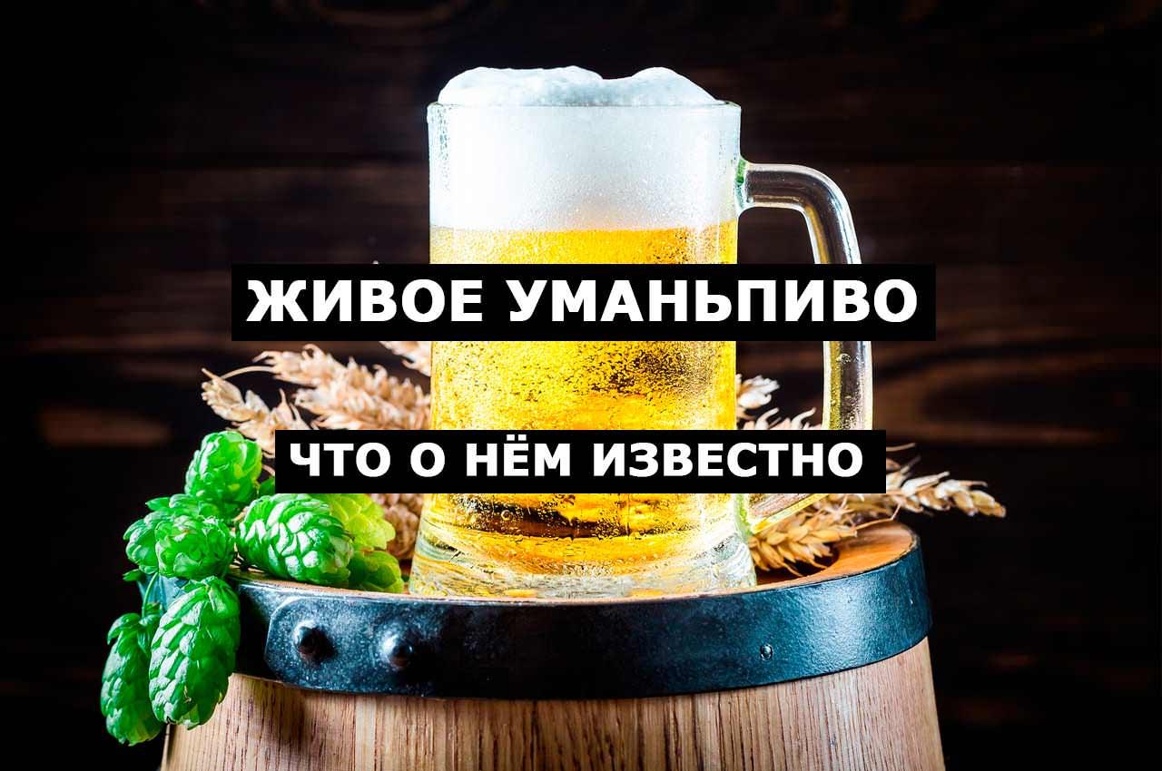 Живое пиво из Умани. Что о нём известно