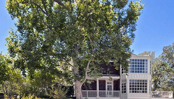 Ченнинг Тейтум купил дом в Беверли-Хиллз | фото, цена, инфо
