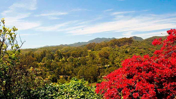 Фото | Вид на зеленую долину со двора дома Тома Хэнкса