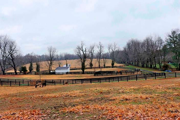 Конная ферма Джонни Деппа в Кентукки на 16,72-гектарах