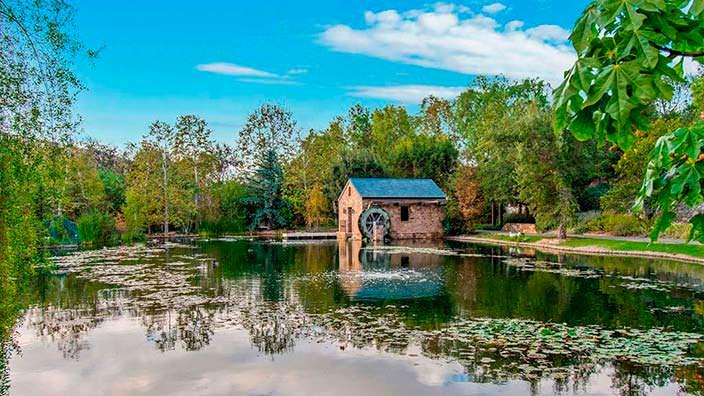Пруд с водяной мельницей на территории поместья