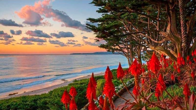 Сад с панорамным видом на Тихий океан