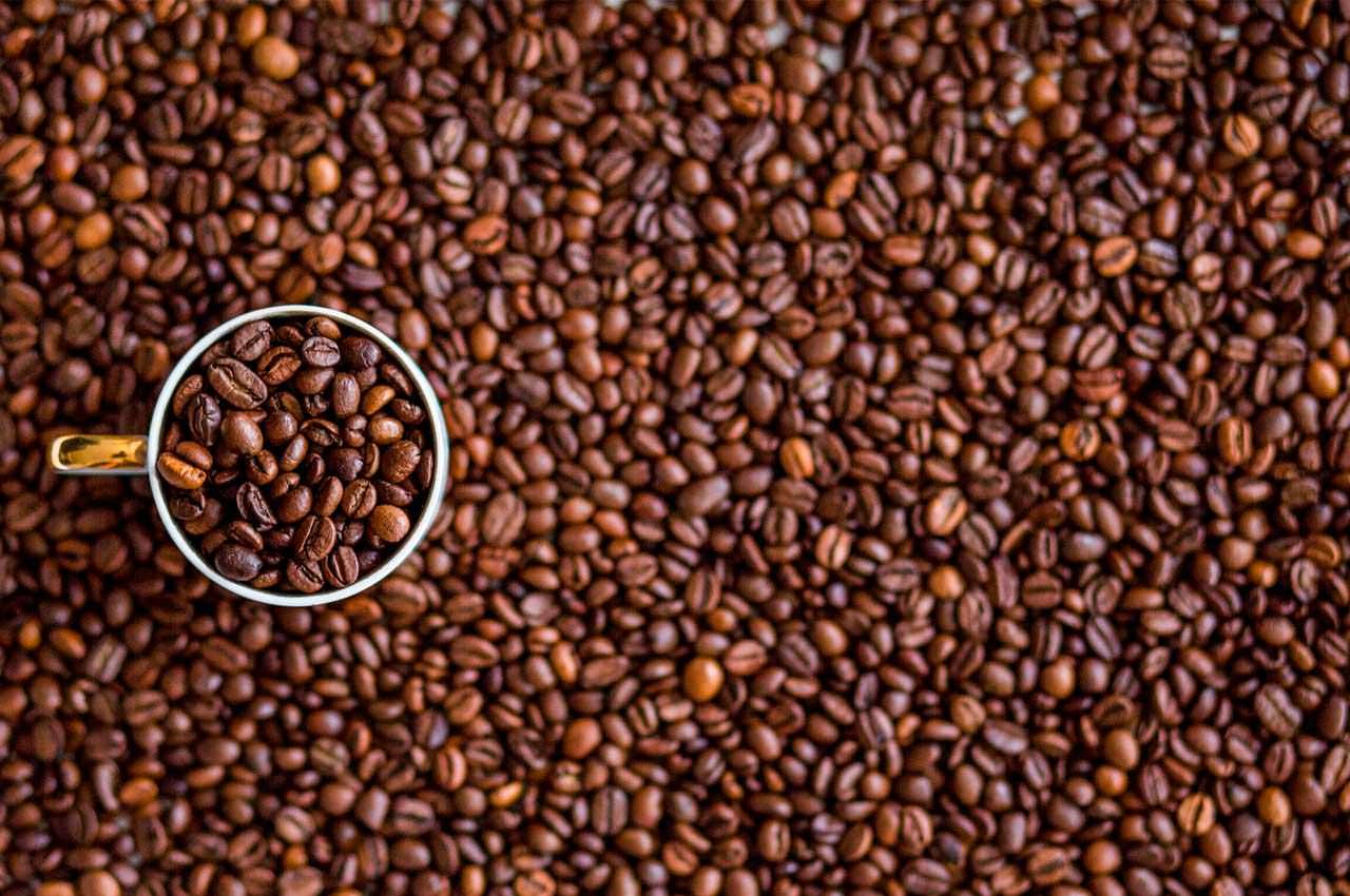 Свежий кофе в вашем доме и немного истории кофейных традиций