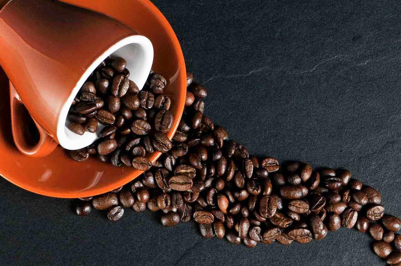 Кофе как бизнес: самые популярные форматы в 2021 году